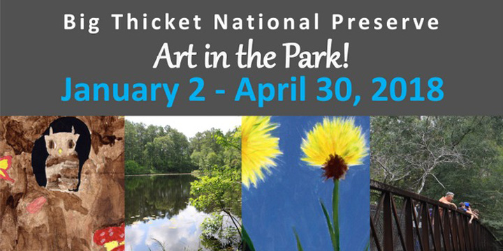 All the Little Things - Art in the Park