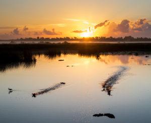 Morning in Port Arthur by Pedro Arrechea