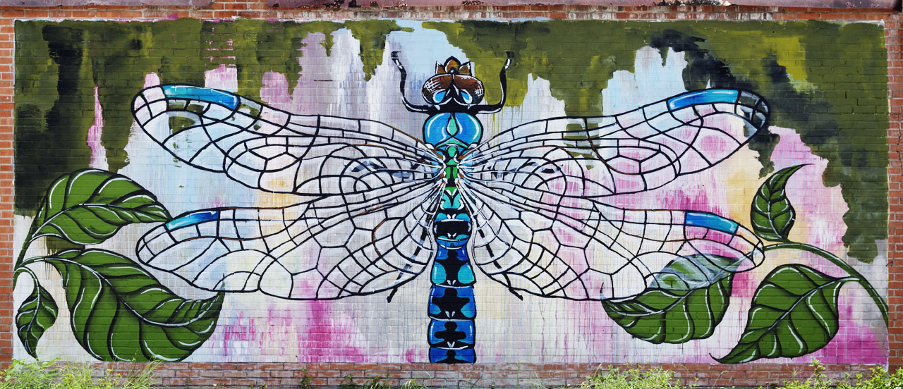 Dragonfly Mural at 660 Fannin Street by Betty Smith